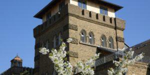 Frühlingsimpressionen - Sanierter Burgturm mit Frühlingsblüte