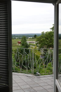 Terrasse - Blick zum Weinberg