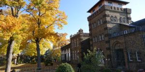 Herbst auf der Wachtelburg